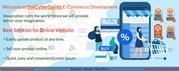 Get Your Magento eCommerce Website