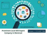 Hire Professional Local SEO Service Provider in Montreal