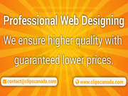 We are offering Professional Web Design & Development Services