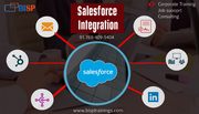Salesforce Integration certification Training course | BISP